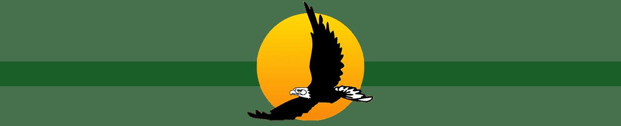 Bald eagle sun logo Scott's Teambuilding